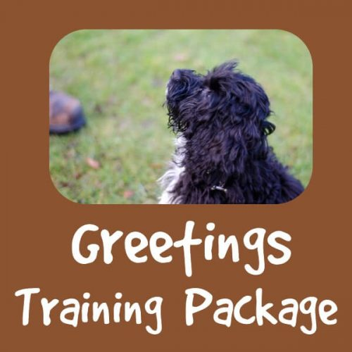 Greeting Training Package by Pawfect Dogsense CIC