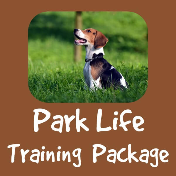 Park Life Training Package by Pawfect Dogsense CIC